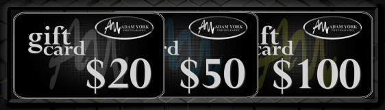 Click here to purchase gift cards
